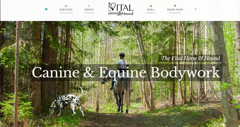 The Vital Horse & Hound In Wilmington NC Canine Equine Massage NC